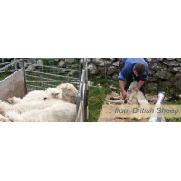 1KG Carded Wool