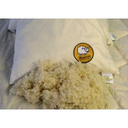 100gm Pillow Wool